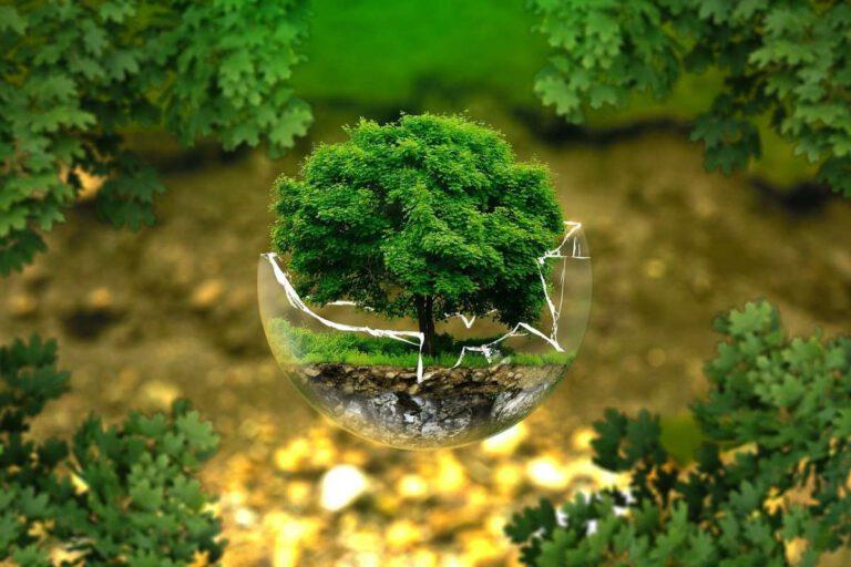 """Fachkonferenz """"Holzbau als Chance für Klimaschutz und Ressourcenschonung"""""""