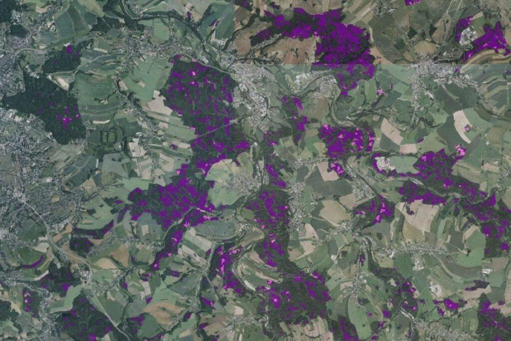 Region Chemnitz: Waldschadens- (lila) und Freiflächen (rosa) östlich von Chemnitz (Stadt Chemnitz links im Bild), Foto: © Sachsenforst